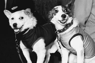 Belka  and Strelka followed Laika, the first dog to orbit Earth in a  non-returnable capsule who died of overheating soon after her launch on  Nov. Description from kyivpost.com. I searched for this on bing.com/images