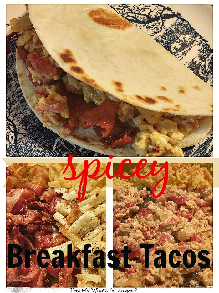 Need a great breakfast idea? Bacon and egg taco's! These are absolutely delicious!