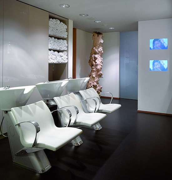 The Petra Mechurova Hair Design Salon