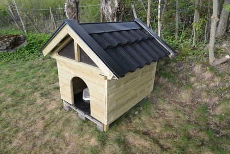 HUNDEHUSET FERDIG!  Hundehuset på pall er ferdig, bare beising gjenstår. (Foto: BRYNJULF BLIX)