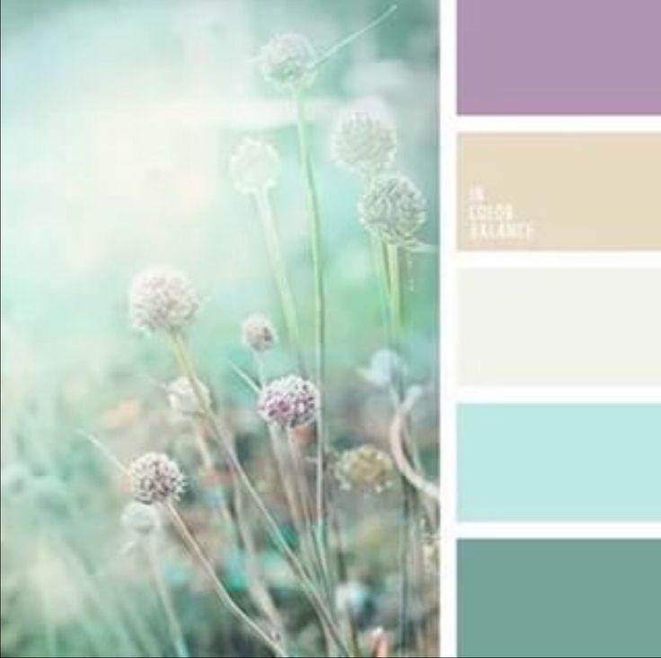 Картинки лилового и мятного цвета