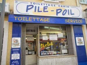 LE VIDE GRENIER DE DIDOU LA BROCANTE: toilettage pile poil 125 avenue général Leclerc 83700 saint Raphael 04/94/19/41/37 TOILETTAGE CANIN VE...
