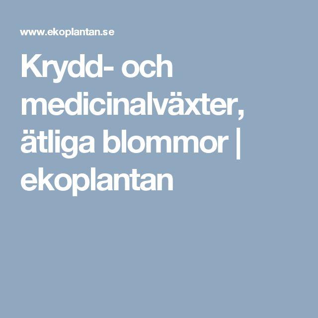 Krydd- och medicinalväxter, ätliga blommor | ekoplantan