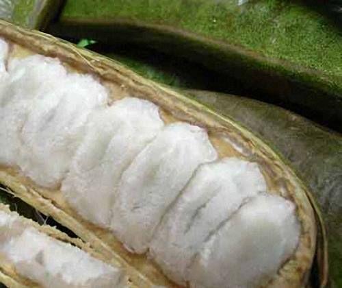 LA GUABA  -  Fruta originaria de Ecuador, textura suave, sabor dulce, es deliciosa!! http://www.wishclub.com/wishpanel/izuecuador
