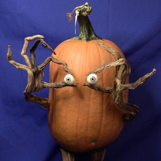 Halloween pumpkin with knob eyes & twig arms ~ By villafanestudios.com