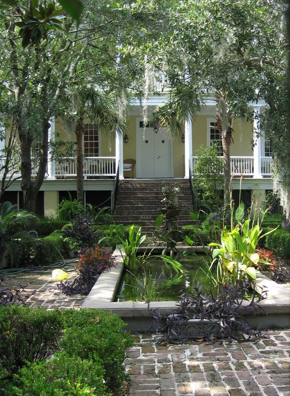 Palm Trees And Antebellum Charleston Southern Charm