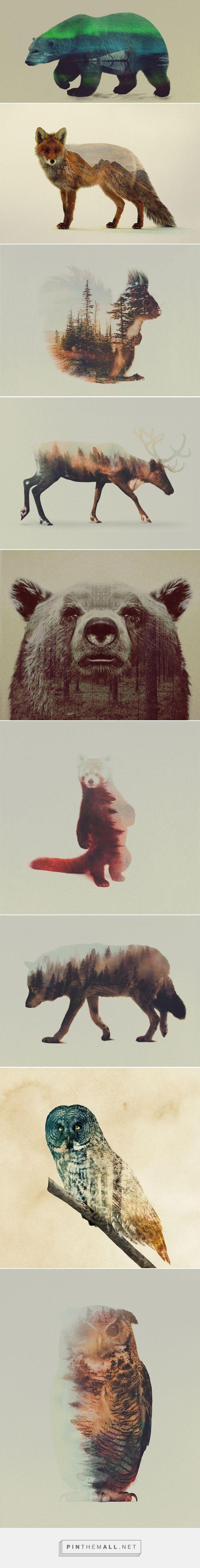 ANDREAS LIE | Animales con piel de paisaje