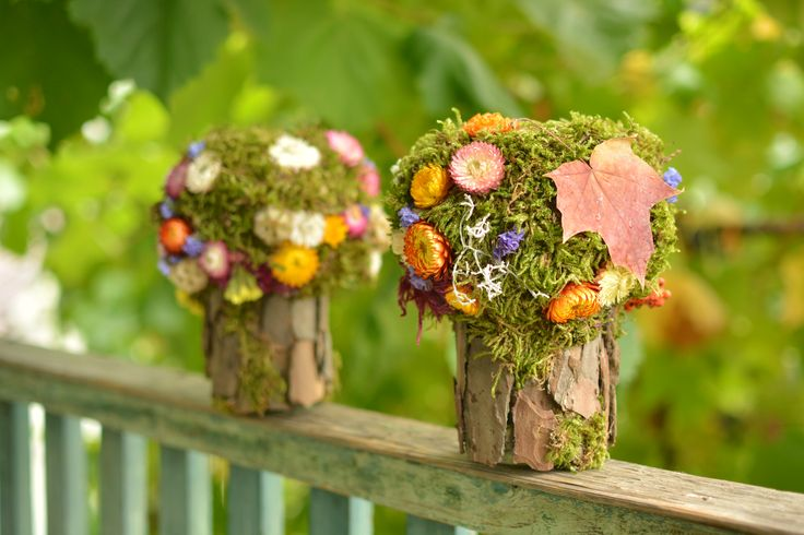 Moss and bark trees, recycle