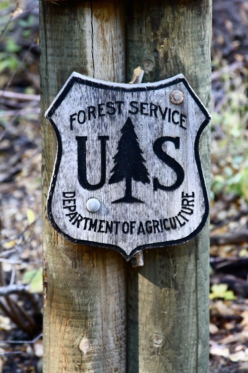 forest service sign