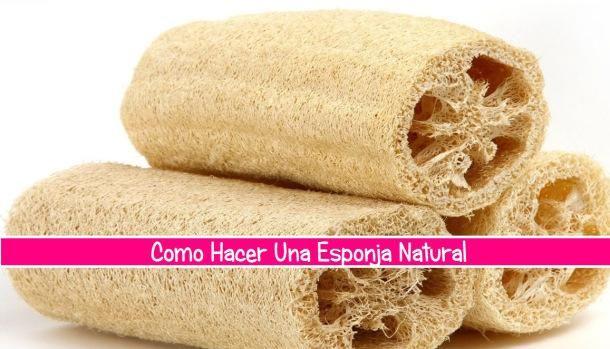 Aprende a hacer una esponja natural con LA HUERTINA DE TONI