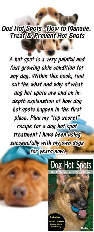 Sample Dog Food Recipe By Dr Karen Becker