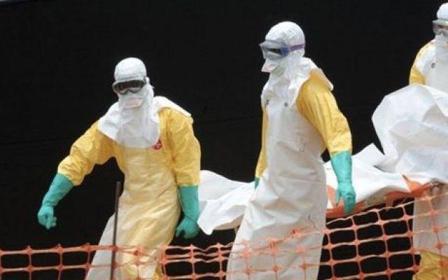 Ebola: allarme dell'OMS. Ministero della Salute italiano rassicura #ebola #epidemia #allarmeebola #virus