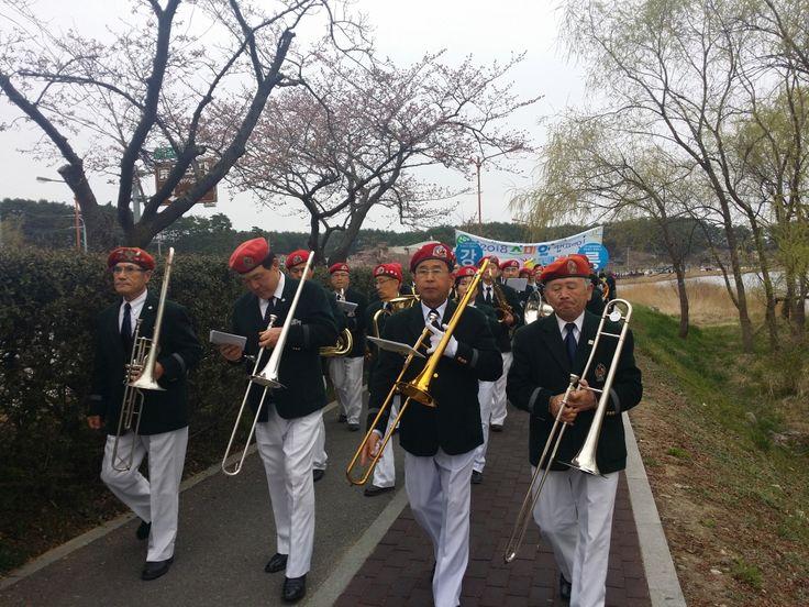 2015년 강릉 경포벚꽃잔치 벚꽃길 퍼레이드