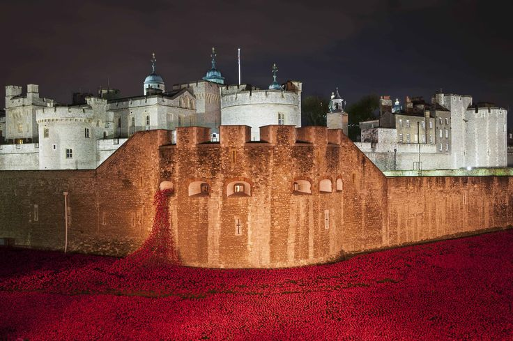 Amazing picture of the Tower Of London and sea of ceramic poppies - also shows just what great lighting can do! If you need any help around your property Melchior Gray is a London-based property maintenance company. We specialise in responsive maintenance, painting/decorating & small building projects. Call our team today on 020 7731 2100 www.melchiorgray.co.uk Photography by ©DavidJensen