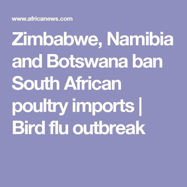 Zimbabwe, Namibia and Botswana ban South African poultry imports | Bird flu outbreak
