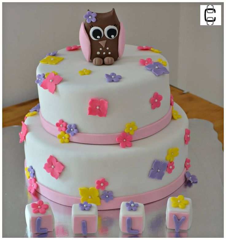 Girl Baby Shower Party Ideas / Girl Baby Shower Cake Ideas / Baby Elephant  Cake /