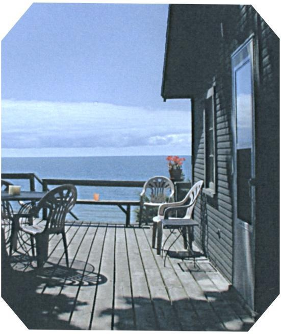 Lake Michigan Rentals Summer Cottages and Vacation Cabins: Michigan Cabin Rental, Rentals Lake Michigan, Favorite Vacation, Summer Cottages, Lake Michigan Rentals, Dream Vacations, Vacation Dreams, Vacation Cabins, Lake Michigan Cottage