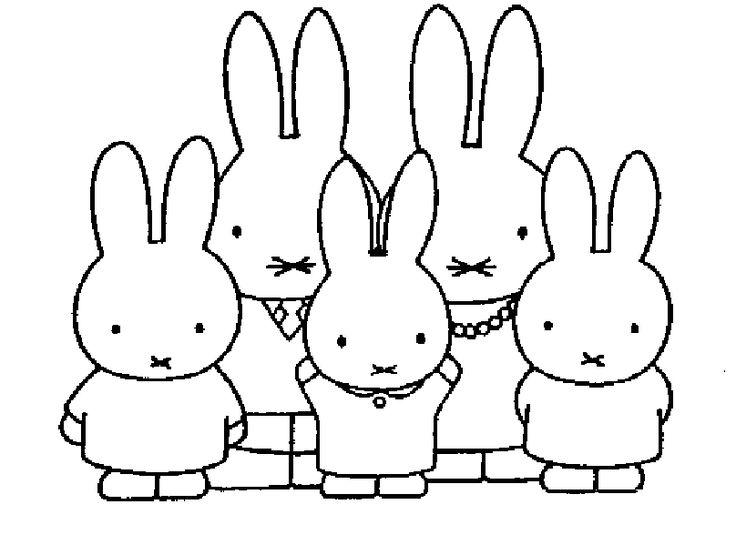 nijntje thema konijn