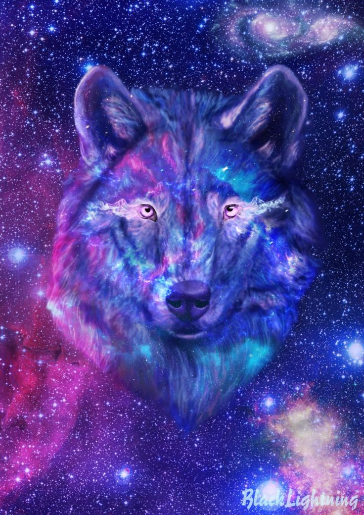 Galaxy Wolf By Blacklightning95 On Deviantart Galaxy