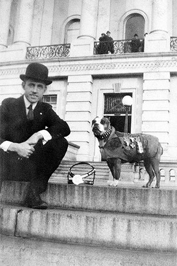 Sergeant Stubby, boston terrier war dog during WWI. this orphan pup was destined for great things. I love Sgt. Stubby!