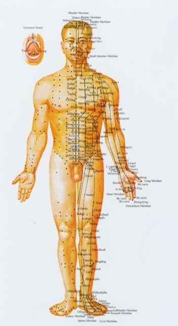 meridiánok akupunktúra pontok elölről