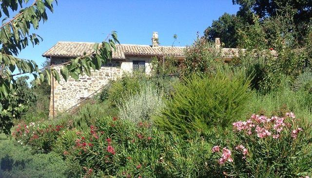 Charming farmhouse with pool and park in Tuscia, close to Bolsena Lake