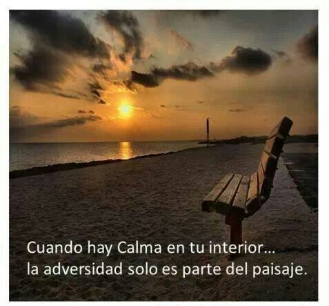 When there is calm inside yourself, the adversity is just part of the scenary!.