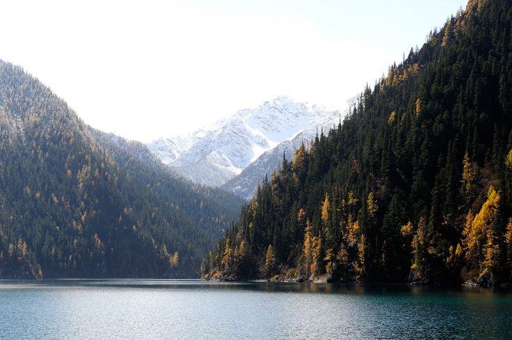 Bosque de Jiuzhaigou, China - Bosques del mundo que parecen encantados