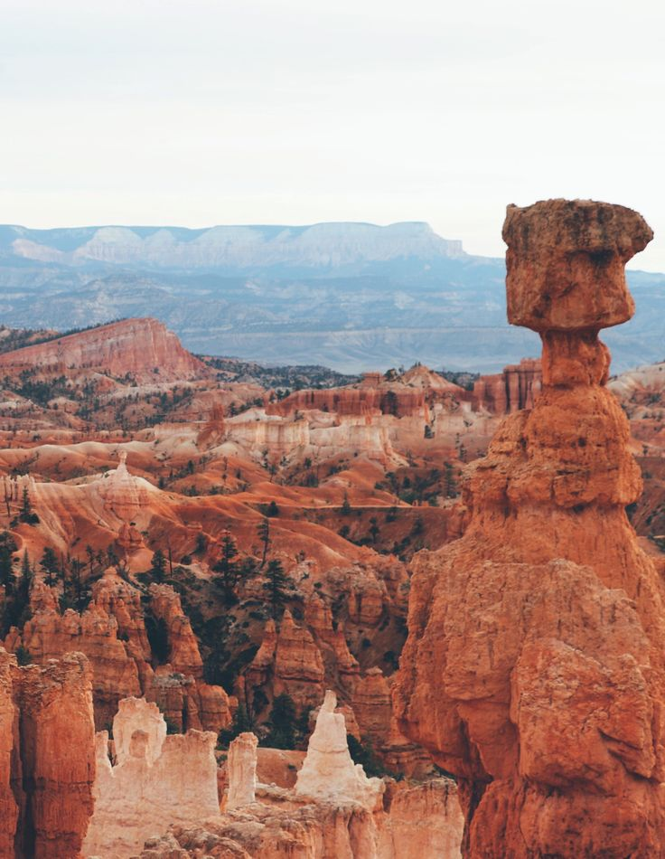 Bryce Canyon's Top Natural Wonders | Click to find out!