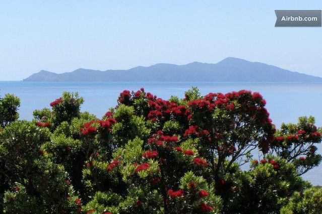 Beach Haven Pukerua Bay