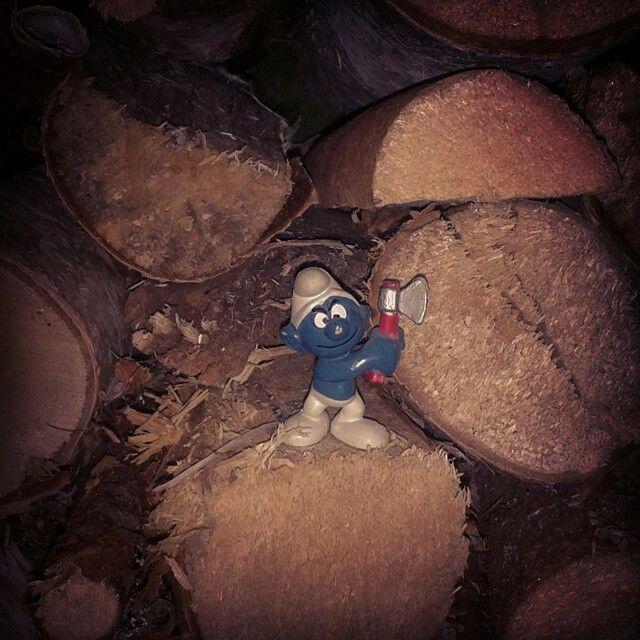 Jag är kär i en skogshuggare