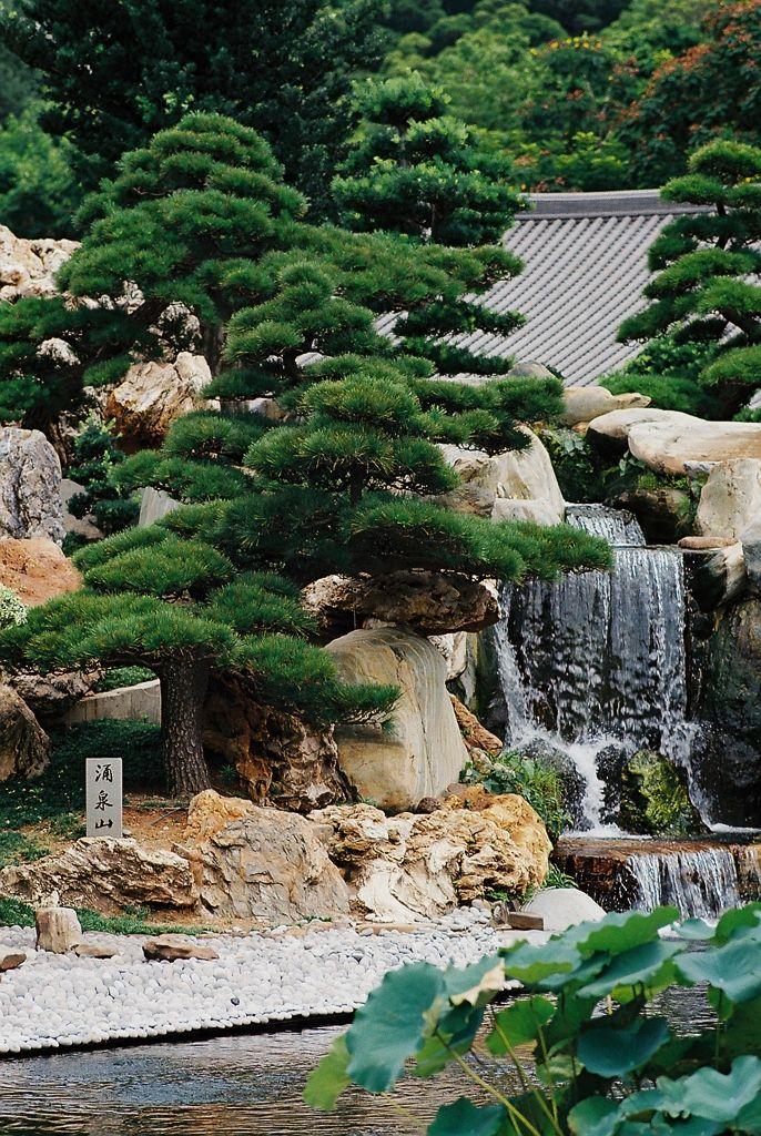 Japanse tuin met waterval