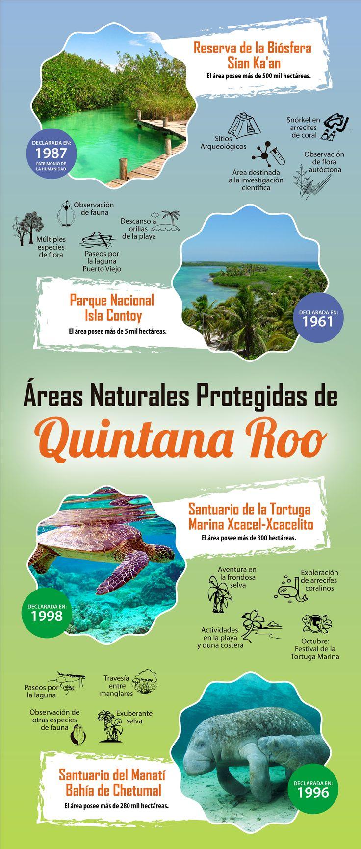 Las #Areas #Naturales Protegidas de #QuintanaRoo ¡logran enamorar a primera vista! Descúbrelas en esta #infografia http://www.bestday.com.mx/Tours/