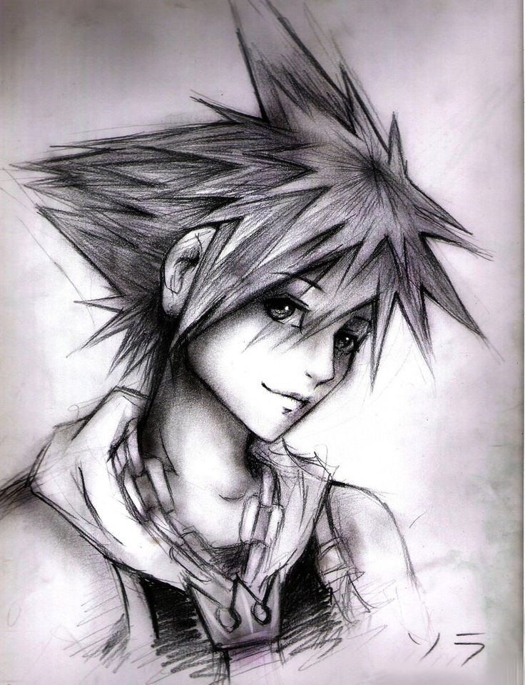 Sora...Is it a bad thing I find fictional characters very attractive?