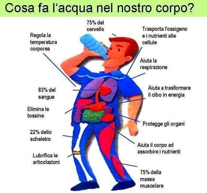 L'importanza di alimentarsi correttamente durante un' #allenamento o una #gara di #endurance #PersonalTrainer #Bologna #triathlon #bicicletta #ciclismo