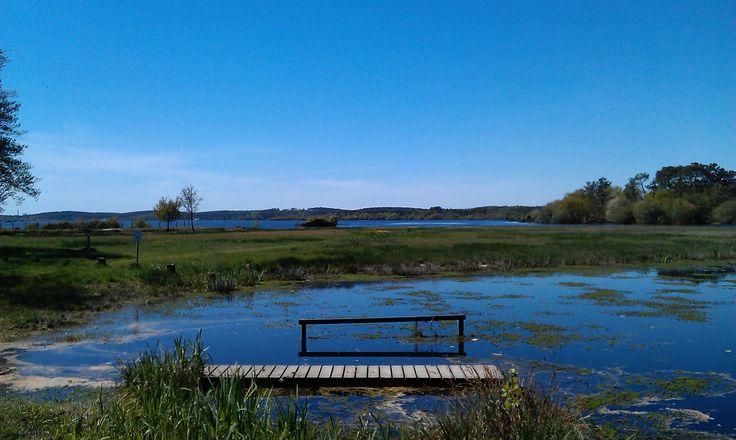 Lac d'Aureilhan à Mimizan #landes #mimizan #lac #étang #lake #nature #aureilhan