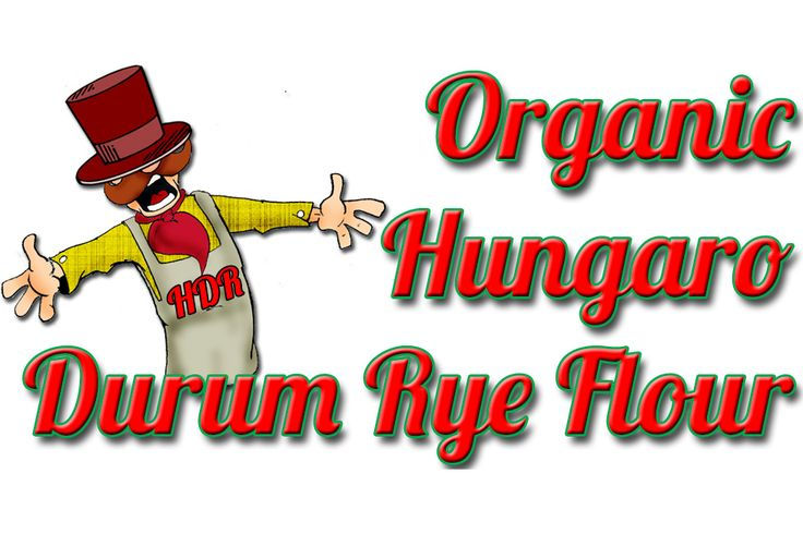 ORGANIC HUNGARO DURUM RYE FLOUR: From the 2014 you can find the organic Hungaro Durum Rye flour among our offers which are in compliance with the highest requirements, and qualified by the Biokontroll Hungária Kft. The grain is derived from strictly controlled ecological farming. Basic requirement of the Hungaro durum rye - which is used to produce flour- that it must be cultivated without plant protection chemicals. It is  very popular and extremely healthy...