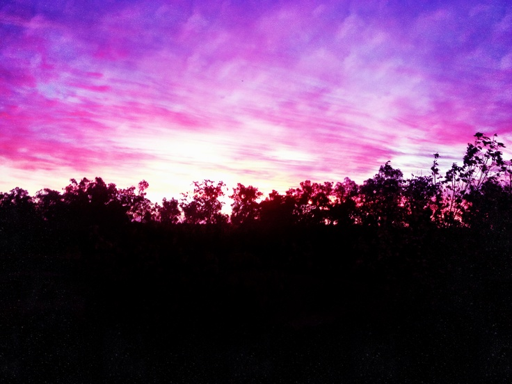 Purple Haze. #nature #sunset #purple #iphone #summer #australia #sky