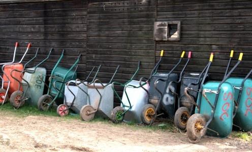 wheelbarrow races?