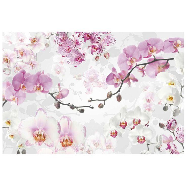 Fototapete Orchideen | Bilder | Dekoration