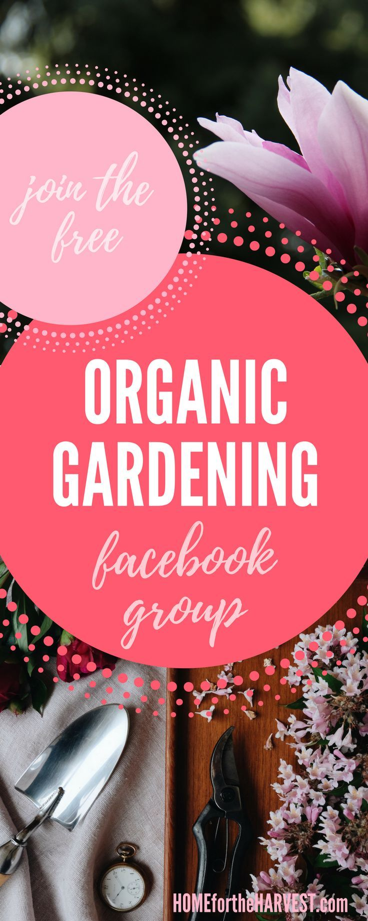 This free Facebook group will help you learn to become a better organic gardener! Share your photos, ask questions, and connect with other gardeners. Sharing our experiences and helping each other out makes us all better gardeners :) #organicgardening #organicgarden #gardening #gardeninggroup #facebookgroup #learntogarden #facebook #howtogarden #garden
