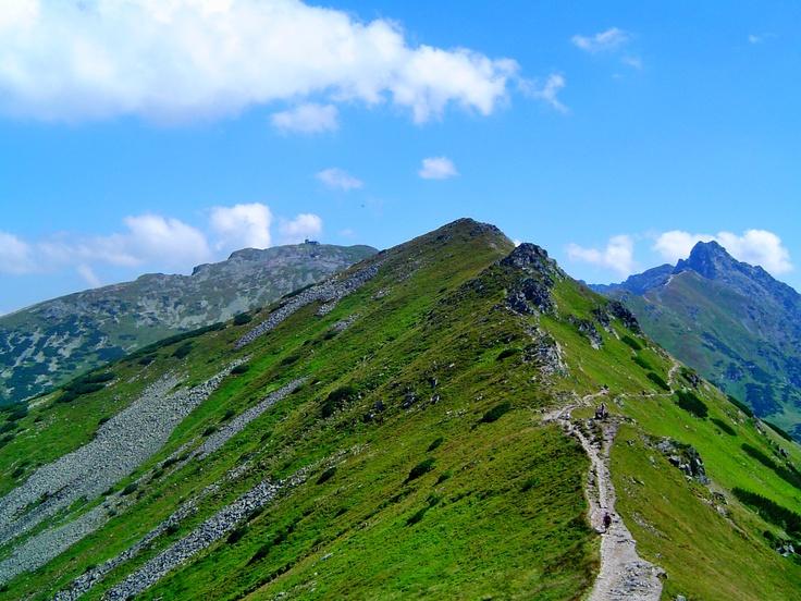 Wspomnienie górskich wędrówek tu najlepiej wypoczywam po roku szkoleń samotnie przemierzając tatrzańskie szlaki. Mam nadzieję że uda mi się i w tym roku przemierzyć też ten szlak prowadzący granią od Czerwonych Wierchów a później z Kopy Kondrackiej na Kasprowy Wierch    The memory of hiking.  I'm resting in the mountains after a year of training alone traversing Tatra routes.  I hope I can this year and also traverse the ridge trail from Czerwone Wierchy across Kondracka Kopa to Kasprowy…