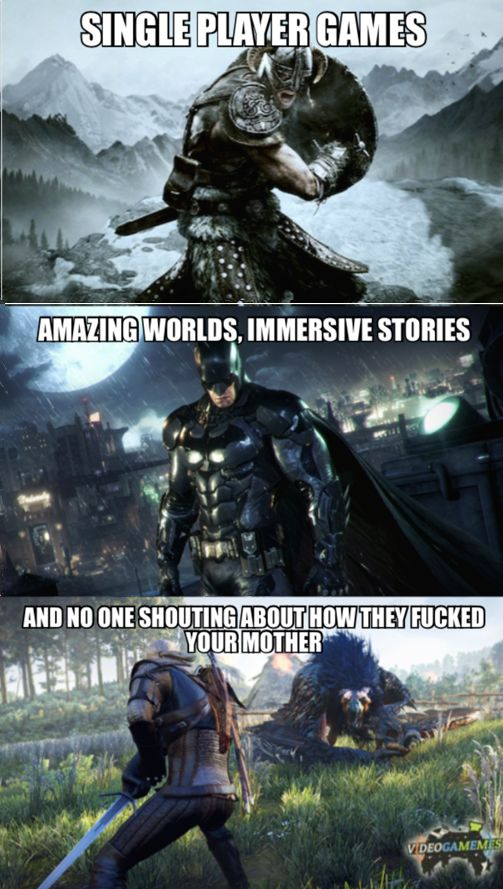 I NEVER liked multiplayer game because 1 they suck. 2 They always have someone yelling FU! 3 I love RPGs