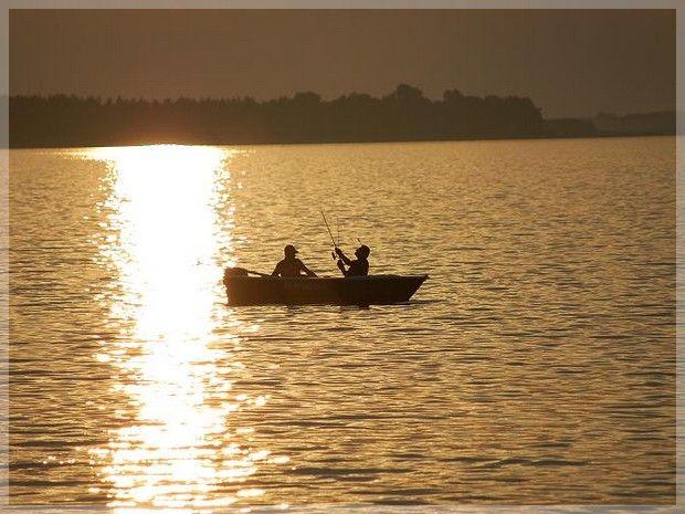 Zbiornik Siemianówka powstał jesienią 1989 roku w wyniku przegrodzenia rzeki Narew w km 432,28 jej biegu, w rejonie wsi Rybaki.
