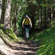 Unterwegs mit dem Mountainbike