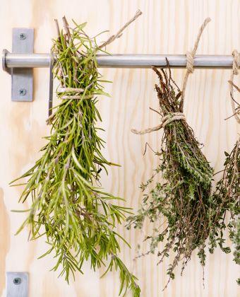 Nahaufnahme von Kräuterbündeln, die an einer GRUNDTAL Stange zum Trocknen hängen.