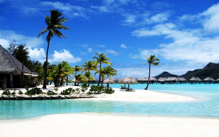 Do you want to live your life free? http://financialfashionblogger.com