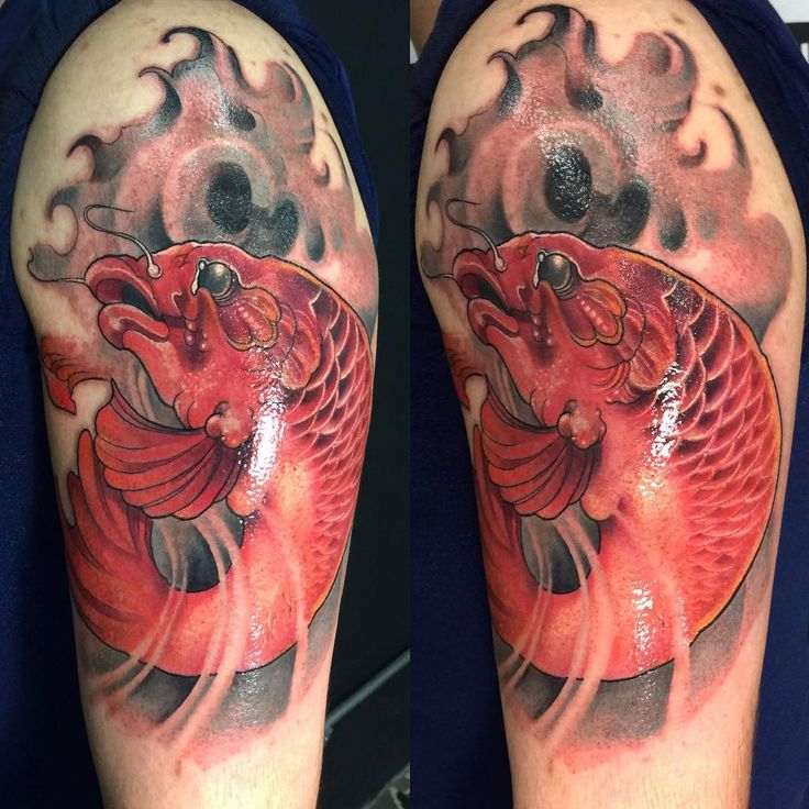 1000 ideas about koi dragon tattoo on pinterest dragon for Dragon koi for sale