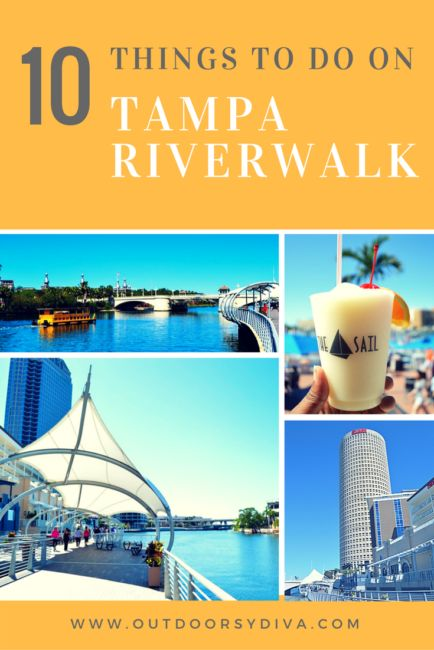 Top 10 things to do on Tampa Riverwalk when visiting Tampa, Florida. This is a top attraction in Tampa Bay.