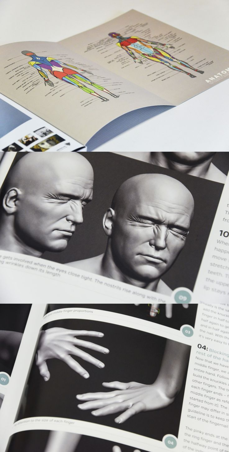 Anatomy for 3D Artists is an essential teaching guide for sculpting human anatomy. Non-software specific, it is packed with everything that today's 3D artist needs to know in order to tackle the difficult task of recreating the human form in 3D.